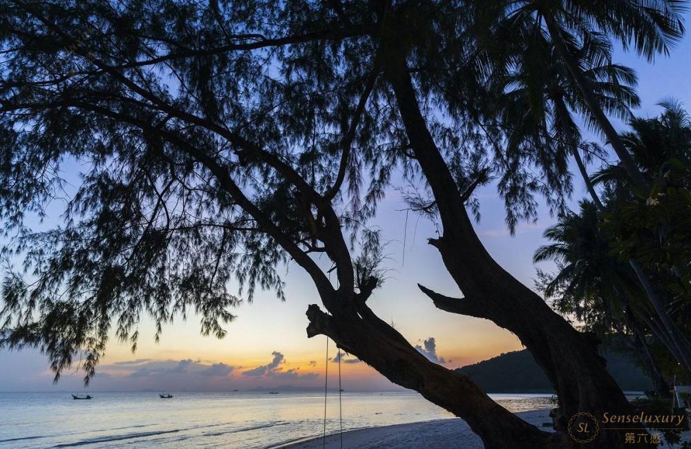 泰国苏梅岛维玛丽别墅绿林